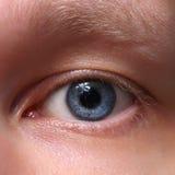 Błękitny męski oko. Zbliżenie fotografia royalty free