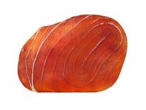 Błękitny marlin polędwicowy. Odosobniony. Obrazy Stock
