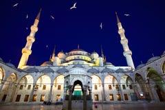 Błękitny meczet Obraz Royalty Free