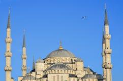 (Błękitny meczet Zdjęcia Royalty Free