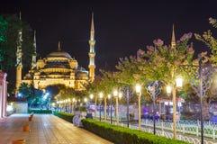 Błękitny meczet w Istanbuł obraz royalty free