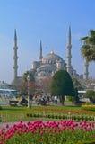 Błękitny meczet z kwiatami w przedpolu Obraz Stock