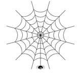 błękitny miękka pająka odcienia sieć zdjęcia stock