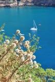 Błękitny morze śródziemnomorskie Zdjęcia Stock