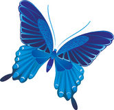 błękitny motyl Obraz Stock