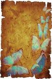 błękitny motyl Zdjęcia Stock