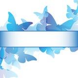 Błękitny Motyla Ramy Projekt Zdjęcia Royalty Free