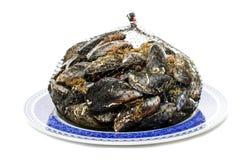Błękitny mussel bivalve obrazy stock