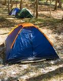 Błękitny namiot na trawie w dżungli w górze Obrazy Stock