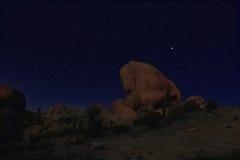 Błękitny nocne niebo w Joshua drzewa parku narodowym Zdjęcie Stock