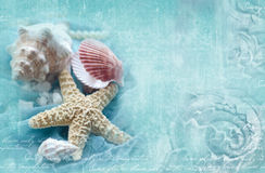 Błękitny ornamentacyjny grunge tło z morskimi skorupami Obraz Royalty Free