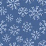 Błękitny płatek śniegu Obrazy Stock