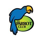 Błękitny Papuzi ptak royalty ilustracja