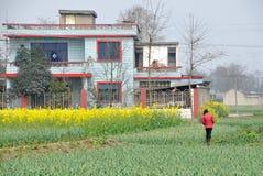 błękitny porcelanowy upraw dom wiejski pengzhou taflujący Obrazy Stock