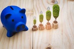 Błękitny prosiątko bank na drewnianej podłodze wypełniającej z monety stertą i ikona dolarem umieszcza I r drzewo, z pojęciem osz obraz royalty free