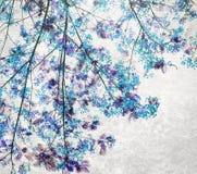 Błękitny Retro koloru brzmienie Flam-boyant kwiat z lekkim grunge tłem Obraz Royalty Free