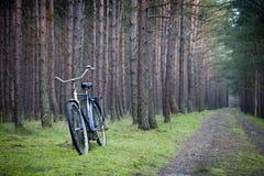Błękitny rower Fotografia Stock