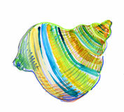 Błękitny seashell Zdjęcie Stock