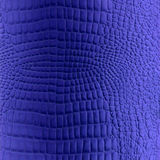 błękitny skóry gada tekstura Obraz Royalty Free