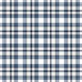 błękitny szkockiej kraty bezszwowy biel Obrazy Royalty Free
