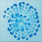 Błękitny tło, motyle lata w spirali Fotografia Stock