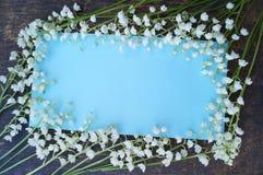 Błękitny tło z białymi kwiatami Obraz Stock