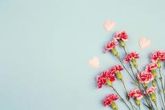 Błękitny tło z goździków kwiatami i kopii przestrzenią Odgórny widok obraz royalty free