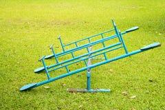 Błękitny totter na trawie zdjęcie stock
