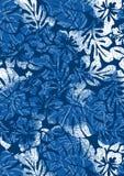 Błękitny tropikalny poślubnik i paprocie. Zdjęcie Stock