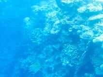 błękitny underwater Fotografia Stock