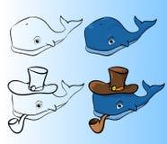 Błękitny wieloryb z drymbą Fotografia Royalty Free