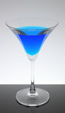 Błękitny wino z szkłem Fotografia Royalty Free