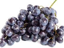 błękitny winogrona Zdjęcia Royalty Free