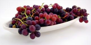 błękitny winogrona Fotografia Stock