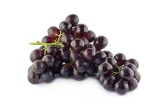 błękitny winogrona Obraz Royalty Free