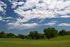 błękitny zieleni nieba drzewa Zdjęcie Stock