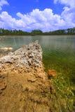 błota park narodowy usa fotografia stock