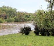 Błotnista rzeka i Piękny Greenery zdjęcie royalty free