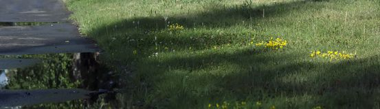 Błoto i kałuże na drodze gruntowej zdjęcie royalty free