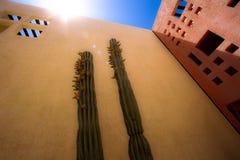 Błysk Meksykański słońce obrazy royalty free