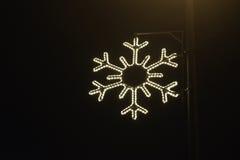 Błyskawicowy płatek śniegu Zdjęcia Stock