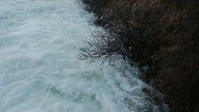 Błyskawiczny strumień halna rzeka na wiosna dniu zdjęcie wideo