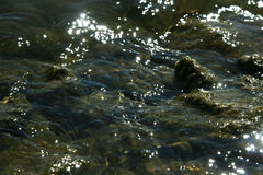 Błyskotliwa woda na płytkim miejsca tle Obraz Stock