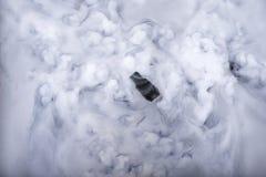 Błyskowej pamięci kij i informaci chmura Zdjęcia Royalty Free