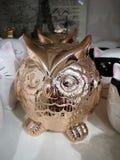 Błyszcząca ceramiczna figurki sowa pieczętuje stać jeden z rzędu po inny na półkach obrazy stock