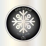 Błyszcząca srebna round moneta Z płatkiem śniegu wektor Zima pieniądze boże narodzenie nowy rok Obrazy Royalty Free