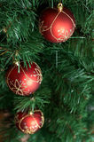 b球大圣诞节装饰绿色红色结构树 免版税库存照片
