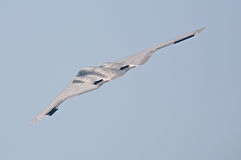 B-2 Spirit bomber. B-2 Spirit stealth bomber - rear upper surface view Stock Image