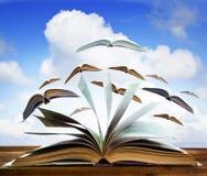 打开在木桌上的旧书页与飞行书页反对b 库存照片