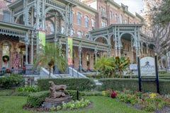 b街市佛罗里达亨利博物馆工厂坦帕 植物博物馆 库存照片